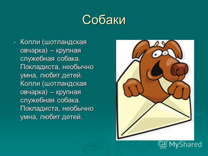 Собаки Вірний друг