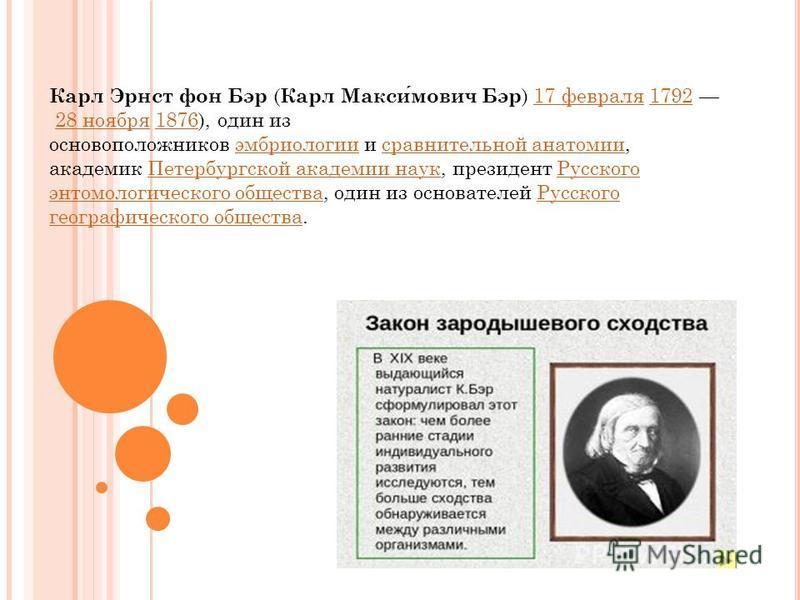 Карл Эрнст фон Бэр ( Карл Максимович Бэр ) 17 февраля 1792 28 ноября 1876), один из основоположников эмбриологии и сравнительной анатомии, академик Петербургской академии наук, президент Русского энтомологического общества, один из основателей Русско
