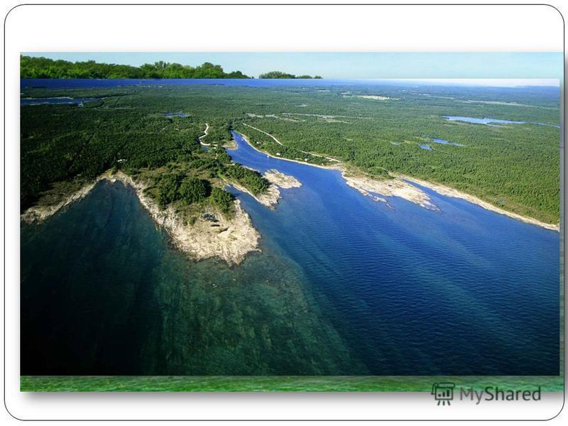Гурон Гурон озеро в США и Канаде, одно из североамериканских Великих озёр. Расположено восточнее озера Мичиган, соединено с ним проливом Макинак. Площадь Гурона около 59 600 км ². Высота поверхности над уровнем моря около 176 м, глубина до 229 м.