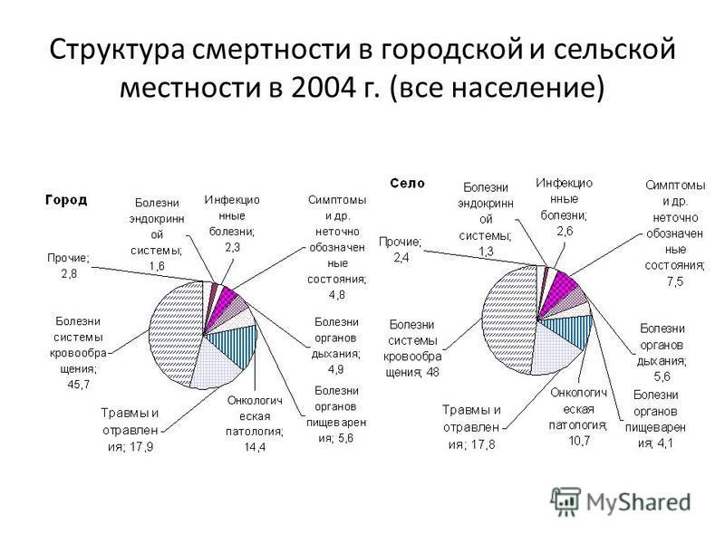 Структура смертности в городской и сельской местности в 2004 г. (все население)