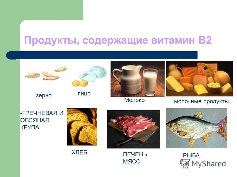 Продукты, содержащие витамин В2 зерно яйцо молочные продукты -ГРЕЧНЕВАЯ И ОВСЯНАЯ КРУПА ПЕЧЕНЬ МЯСО РЫБА ХЛЕБ Молоко