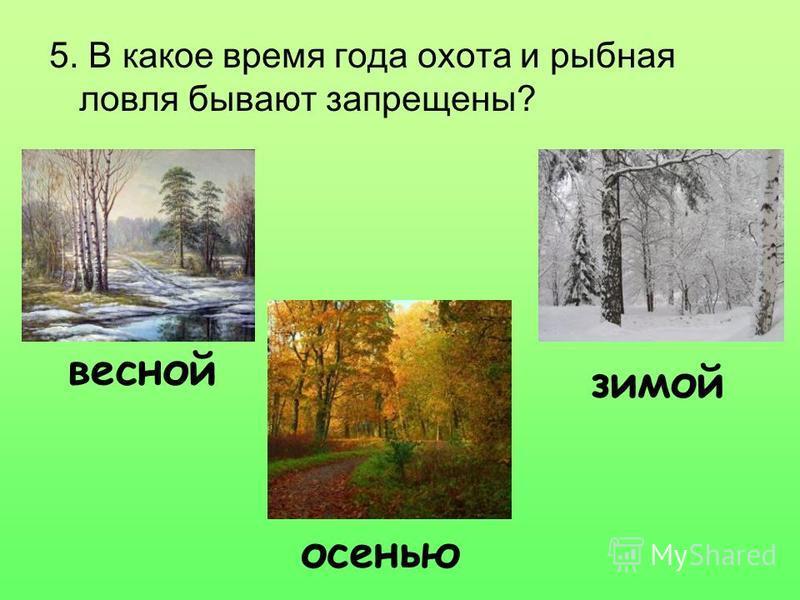 5. В какое время года охота и рыбная ловля бывают запрещены? весной осенью зимой