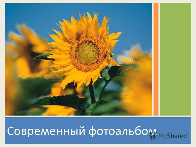Современный фотоальбом
