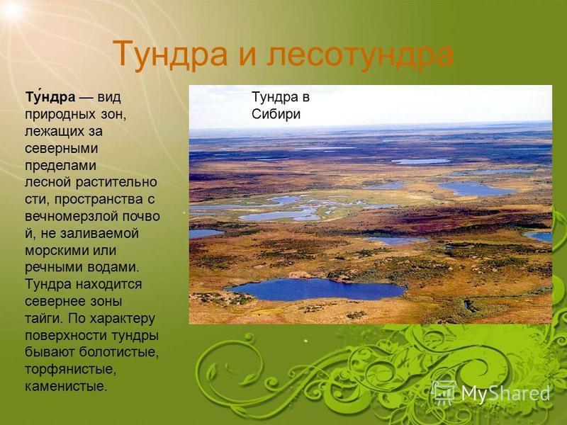 Тунедра и лесотунедра Тунедра в Сибири Ту́недра вид природных зон, лежащих за северными пределами лесной растительности, пространства с вечномерзлой почвой, не заливаемой морскими или речными водами. Тунедра находится севернее зоны тайги. По характер