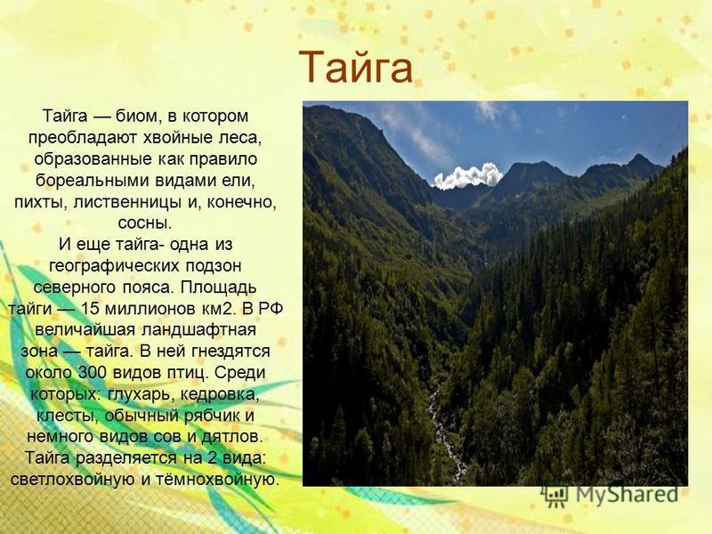 Тайга Тайга биом, в котором преобладают хвойные леса, образованные как правило бореальными видами ели, пихты, лиственницы и, конечно, сосны. И еще тайга- одна из географических подзон северного пояса. Площадь тайги 15 миллионов км 2. В РФ величайшая