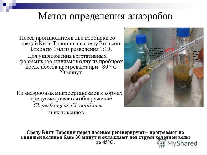 Метод определения анаэробов Посев производится в две пробирки со средой Китт-Тароцци и в среду Вильсон- Блера по 1 мл из разведения 1:10. Для уничтожения вегетативных форм микроорганизмов одну из пробирок после посева прогревают при 80 ° С 20 минут.