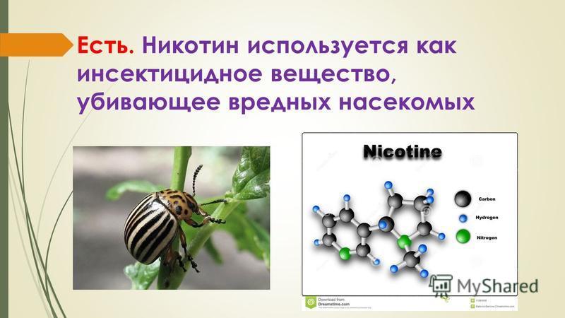 Есть. Никотин используется как инсектицидное вещество, убивающее вредных насекомых