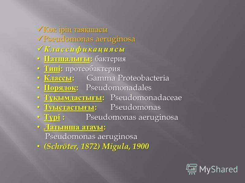 Көк ірің таяқшасы Көк ірің таяқшасы Pseudomonas aeruginosa Pseudomonas aeruginosa Классификациясы Классификациясы Патшалығы : бактерия Патшалығы : бактерия Типі : протеобактерия Типі : протеобактерия Классы : Gamma Proteobacteria Классы : Gamma Prote