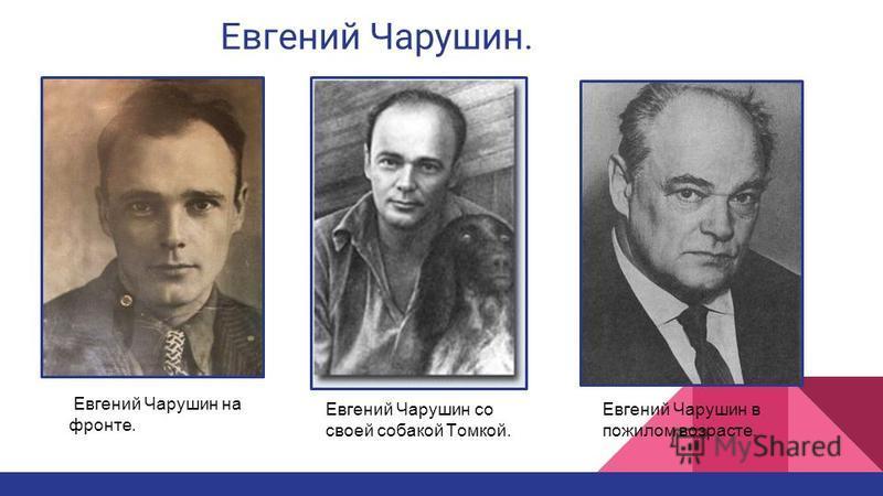 Евгений Чарушин. Евгений Чарушин на фронте. Евгений Чарушин со своей собакой Томкой. Евгений Чарушин в пожилом возрасте.