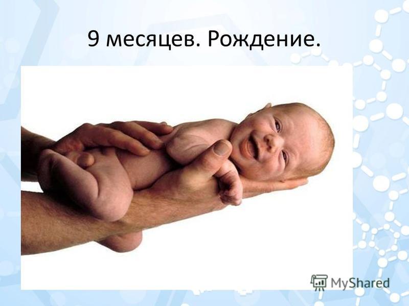 9 месяцев. Рождение.