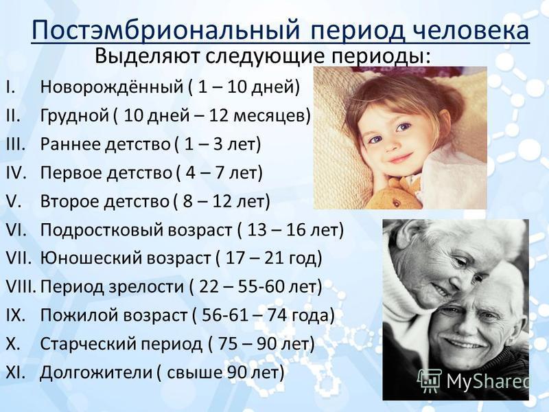 Постэмбриональный период человека Выделяют следующие периоды: I.Новорождённый ( 1 – 10 дней) II.Грудной ( 10 дней – 12 месяцев) III.Раннее детство ( 1 – 3 лет) IV.Первое детство ( 4 – 7 лет) V.Второе детство ( 8 – 12 лет) VI.Подростковый возраст ( 13