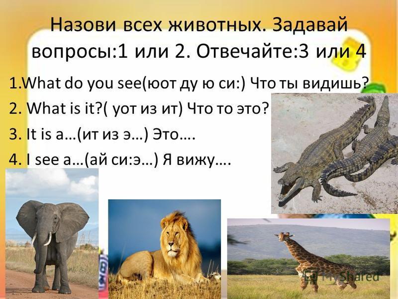 Назови всех животных. Задавай вопросы:1 или 2. Отвечайте:3 или 4 1. What do you see(юот ду ю си:) Что ты видишь? 2. What is it?( кот из ит) Что то это? 3. It is a…(ит из э…) Это…. 4. I see a…(ай си:э…) Я вижу….