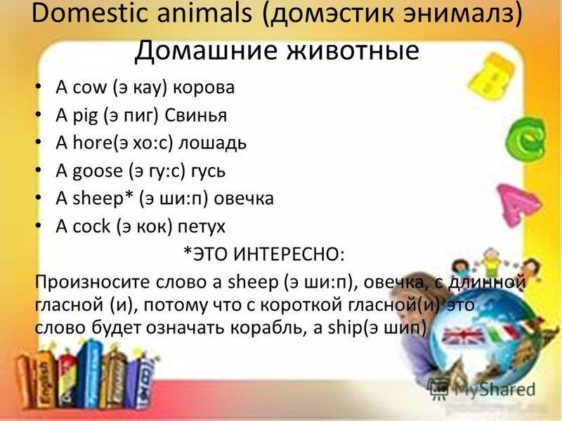 Domestic animals (доместик энималз) Домашние животные A cow (э как) корова A pig (э пик) Свинья A hore(э хо:с) лошадь A goose (игру:с) гусь A sheep* (э ши:п) овечка A cock (э кок) петух *ЭТО ИНТЕРЕСНО: Произносите слово a sheep (э ши:п), овечка, с дл