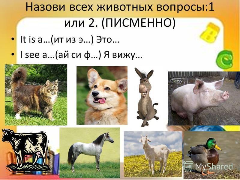 Назови всех животных вопросы:1 или 2. (ПИСМЕННО) It is a…(ит из э…) Это… I see a…(ай си ф…) Я вижу…