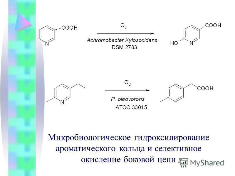 Микробиологическое гидроксилирование ароматического кольца и селективное окисление боковой цепи