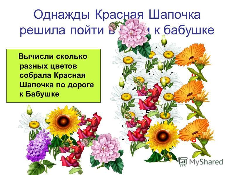 Однажды Красная Шапочка решила пойти в гости к бабушке Вычисли сколько разных цветов собрала Красная Шапочка по дороге к Бабушке 9 – 6 + 2 = 5 5 + 2 – 4 = 3 4 + 5 – 1 = 8 6 – 2 + 5 = 9 4 + 2 – 0 = 6 7 – 5 + 0 = 2 8 – 5 – 3 = 0 3 + 1 + 4 = 8
