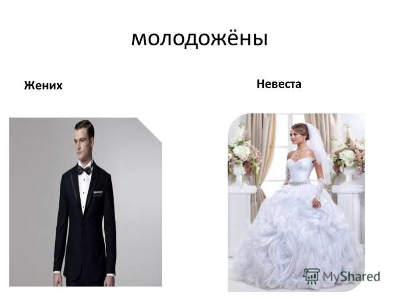 молодожёны Жених Невеста