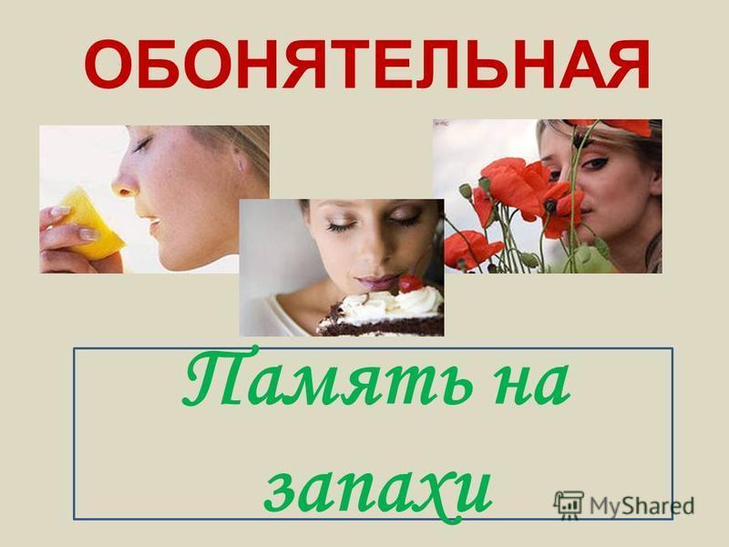 ОБОНЯТЕЛЬНАЯ Память на запахи