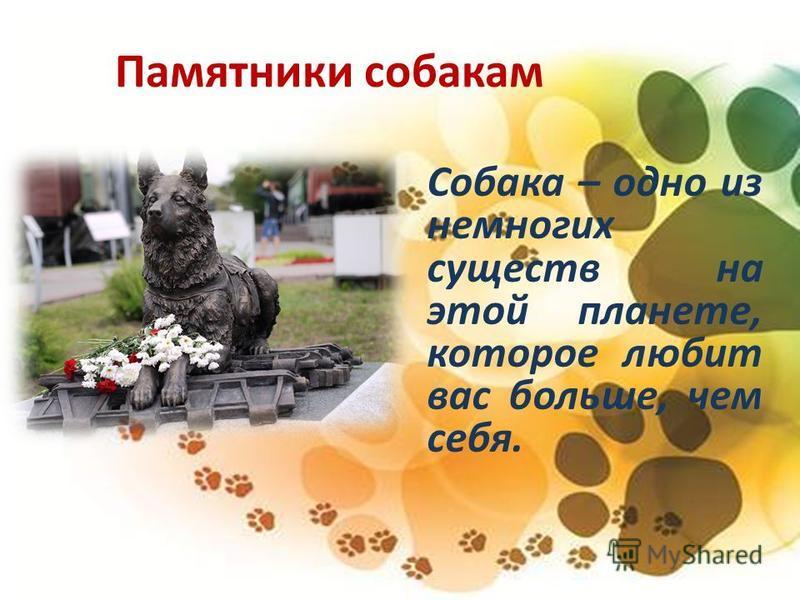 Памятники собакам Собака – одно из немногих существ на этой планете, которое любит вас больше, чем себя.