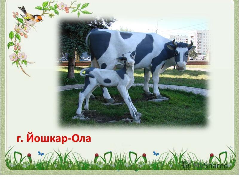 г. Йошкар-Ола