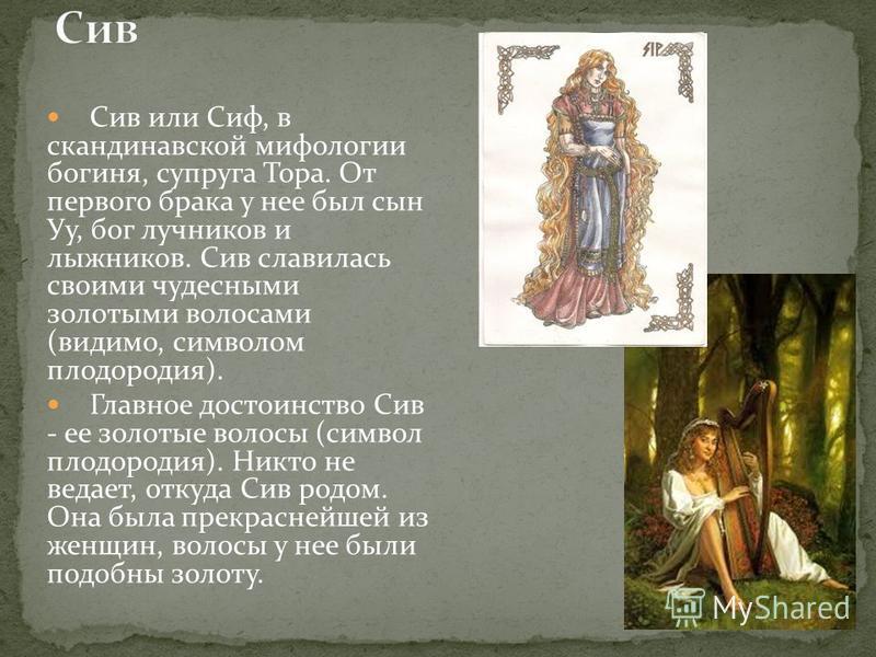Сив или Сиф, в скандинавской мифологии богиня, супруга Тора. От первого брака у нее был сын Уу, бог лучников и лыжников. Сив славилась своими чудесными золотыми волосами (видимо, символом плодородия). Главное достоинство Сив - ее золотые волосы (симв