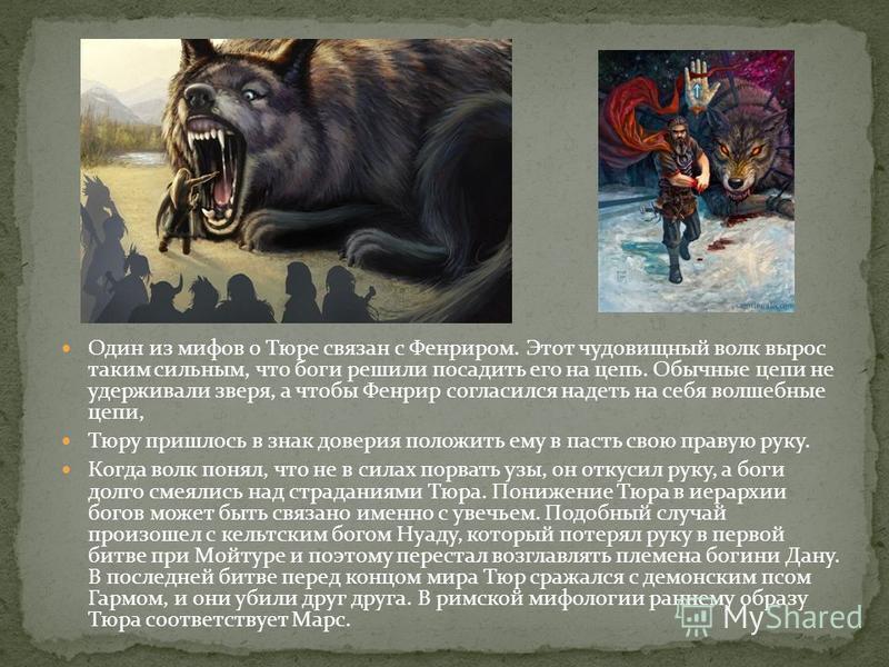 Один из мифов о Тюре связан с Фенриром. Этот чудовищный волк вырос таким сильным, что боги решили посадить его на цепь. Обычные цепи не удерживали зверя, а чтобы Фенрир согласился надеть на себя волшебные цепи, Тюру пришлось в знак доверия положить е