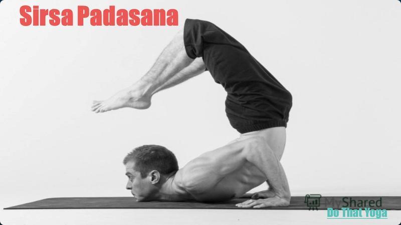 Sirsa Padasana Do That Yoga