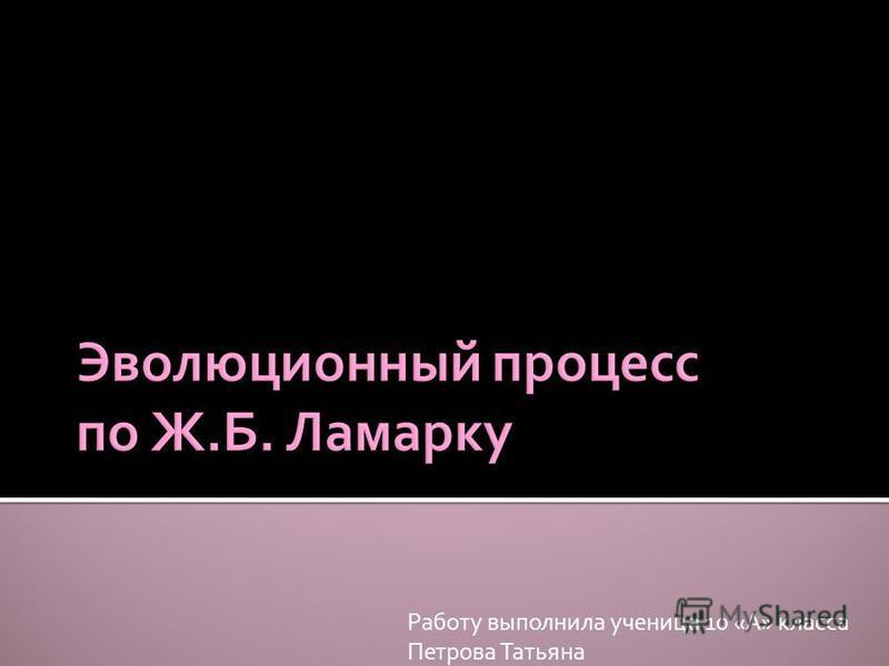 Работу выполнила ученица 10 «А» класса Петрова Татьяна