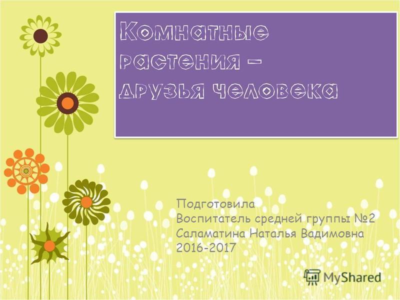 Подготовила Воспитатель средней группы 2 Саламатина Наталья Вадимовна 2016-2017