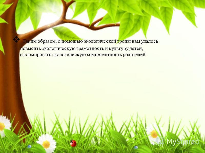 Таким образом, с помощью экологической тропы нам удалось повысить экологическую грамотность и культуру детей, сформировать экологическую компетентность родителей.