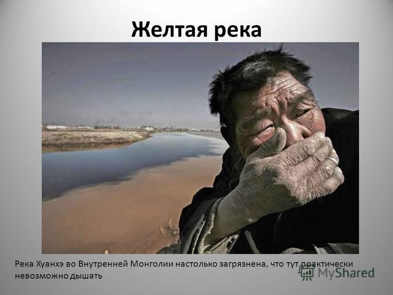 Желтая река Река Хуанхэ во Внутренней Монголии настолько загрязнена, что тут практически невозможно дышать