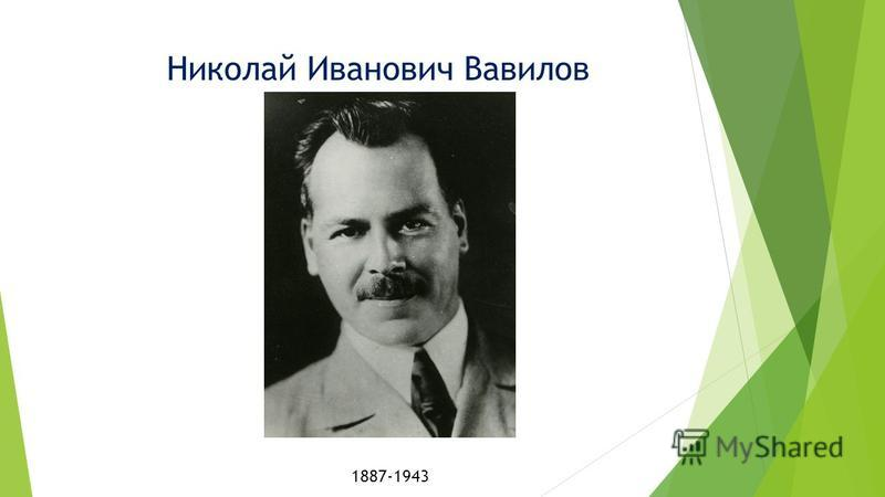 Николай Иванович Вавилов 1887-1943