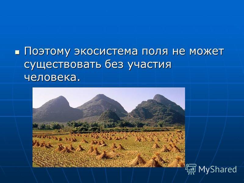 Поэтому экосистема поля не может существовать без участия человека. Поэтому экосистема поля не может существовать без участия человека.
