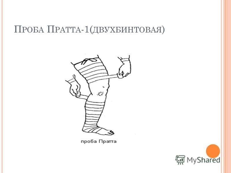 П РОБА П РАТТА -1( ДВУХБИНТОВАЯ )