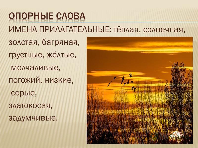 ИМЕНА ПРИЛАГАТЕЛЬНЫЕ: тёплая, солнечная, золотая, багряная, грустные, жёлтые, молчаливые, погожий, низкие, серые, злато косая, задумчивые.