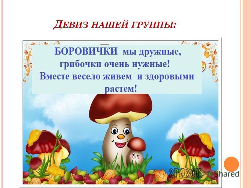 Д ЕВИЗ НАШЕЙ ГРУППЫ :