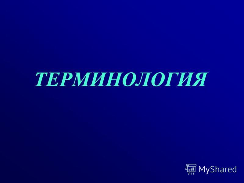 ТЕРМИНОЛОГИЯ 3