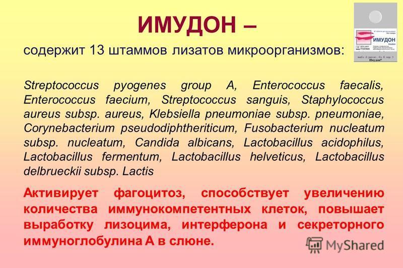 ИМУДОН – содержит 13 штаммов лизатов микроорганизмов: Streptococcus pyogenes group A, Enterococcus faecalis, Enterococcus faecium, Streptococcus sanguis, Staphylococcus aureus subsp. aureus, Klebsiella pneumoniae subsp. pneumoniae, Corynebacterium ps
