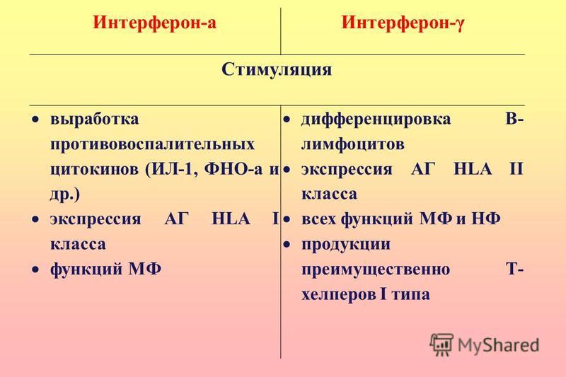 Интерферон-а Интерферон-γ Стимуляция выработка противовоспалительных цитокинов (ИЛ-1, ФНО-а и др.) экспрессия АГ HLA I класса функций МФ дифференцировка В- лимфоцитов экспрессия АГ HLA II класса всех функций МФ и НФ продукции преимущественно Т- хелпе