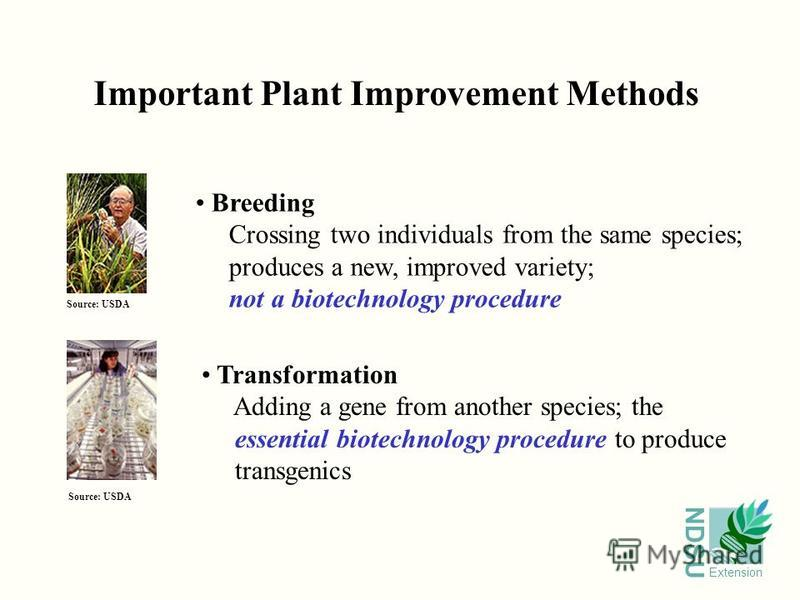 NDSU Extension Important Plant Improvement Methods Breeding Crossing two individuals from the same species; produces a new, improved variety; not a biotechnology procedure Transformation Adding a gene from another species; the essential biotechnology
