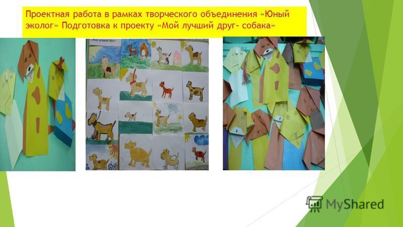 Проектная работа в рамках творческого объединения «Юный эколог» Подготовка к проекту «Мой лучший друг- собака»