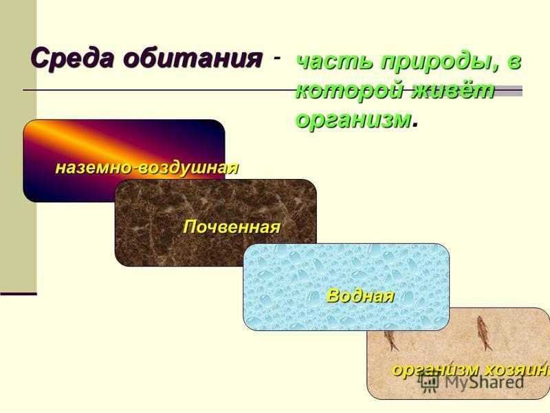 КЛЕТКА ткань орган система органов организм