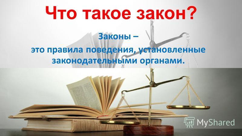 Что такое закон? Законы – это правила поведения, установленные законодательными органами.