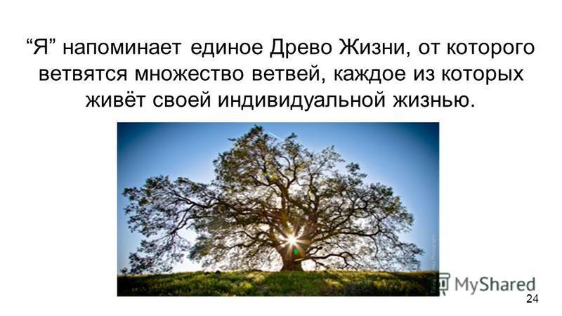 Я напоминает единое Древо Жизни, от которого ветвятся множество ветвей, каждое из которых живёт своей индивидуальной жизнью. Я напоминает Золото, из которого можно изготовить множество драгоценных и полезных золотых изделий. Я как-бы двойственно: ест