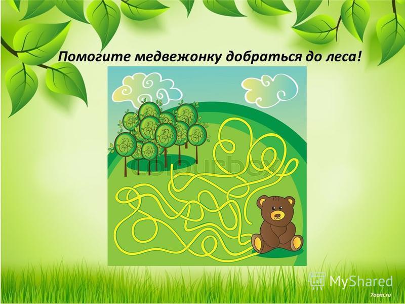 Помогите медвежонку добраться до леса!