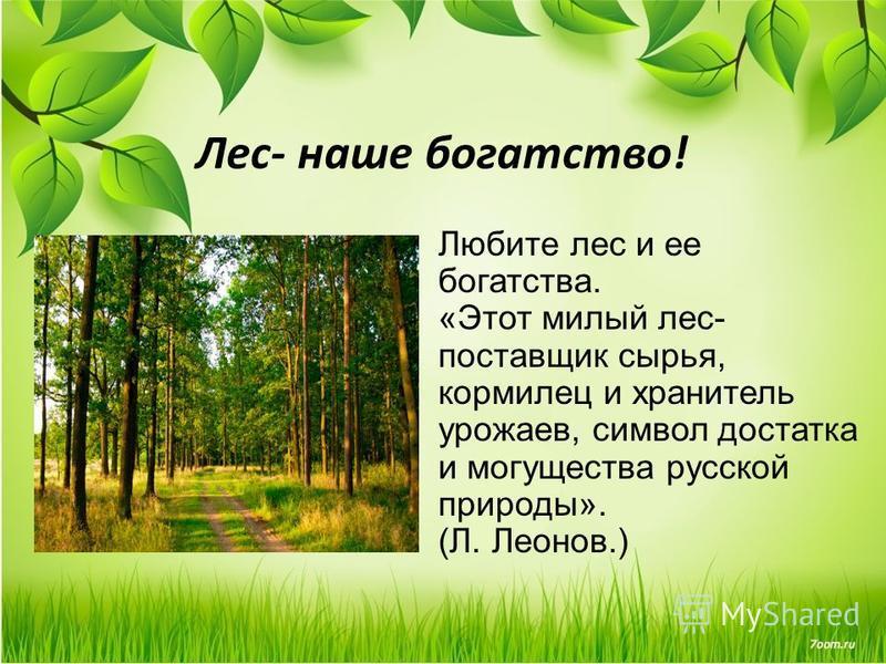 Любите лес и ее богатства. «Этот милый лес- поставщик сырья, кормилец и хранитель урожаев, символ достатка и могущества русской природы». (Л. Леонов.) Лес- наше богатство!