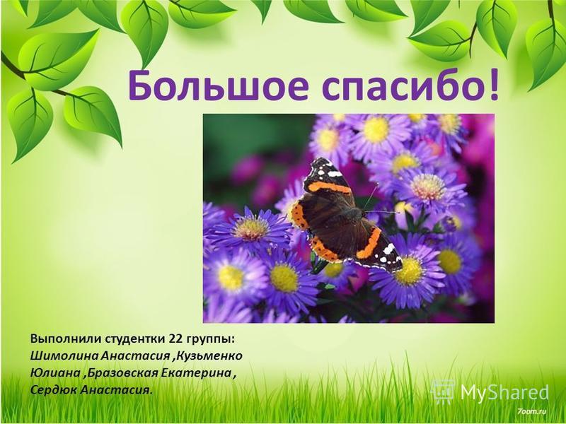 Большое спасибо! Выполнили студентки 22 группы: Шимолина Анастасия,Кузьменко Юлиана,Бразовская Екатерина, Сердюк Анастасия.