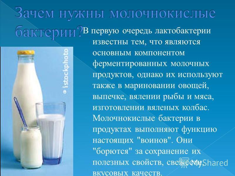 В первую очередь лактобактерии известны тем, что являются основным компонентом ферментированных молочных продуктов, однако их используют также в мариновании овощей, выпечке, вялении рыбы и мяса, изготовлении вяленых колбас. Молочнокислые бактерии в п