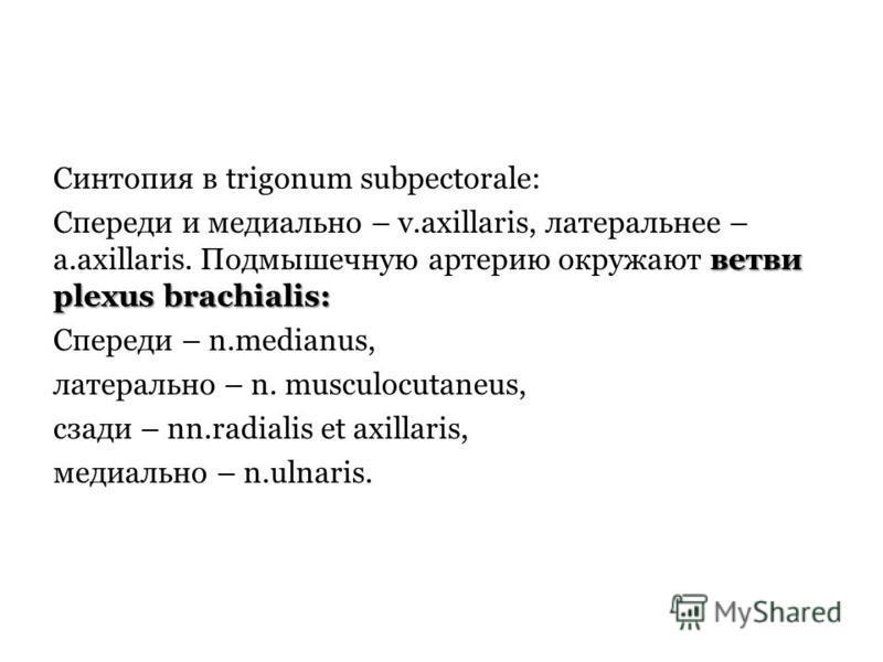 Синтопия в trigonum subpectorale: ветви plexus brachialis: Спереди и медиально – v.аxillaris, латеральное – a.axillaris. Подмышечную артерию окружают ветви plexus brachialis: Спереди – n.medianus, латерально – n. musculocutaneus, сзади – nn.radialis
