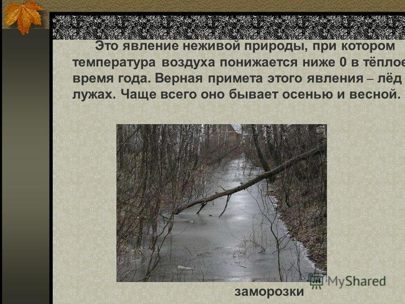 Это явление неживой природы, при котором температура воздуха понижается ниже 0 в тёплое время года. Верная примета этого явления – лёд лужах. Чаще всего оно бывает осенью и весной. заморозки Это явление неживой природы, при котором температура воздух
